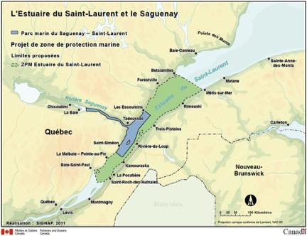 L'estuaire du Saint-Laurent doit devenir une aire de protection marine