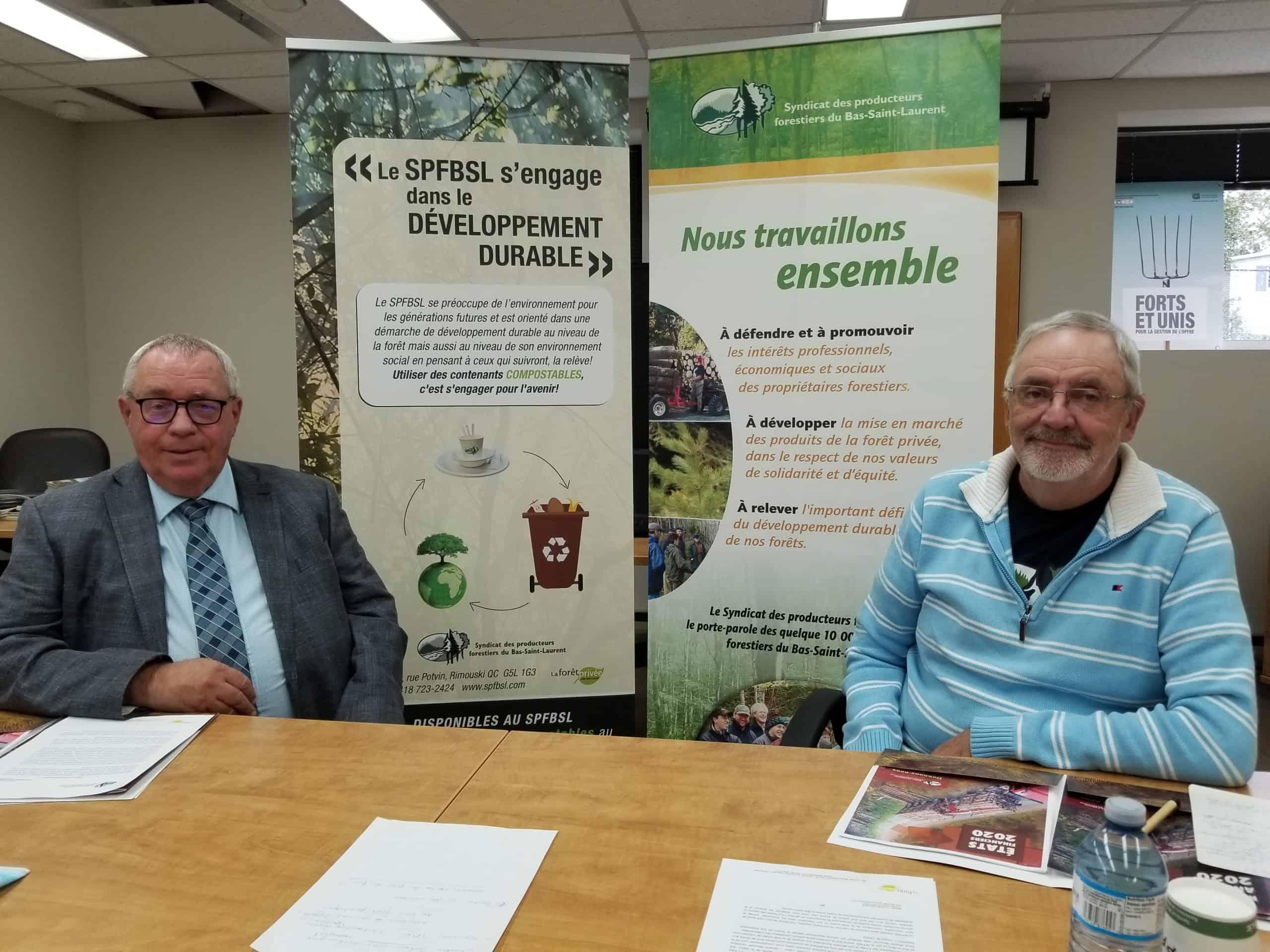 Année insécurisante pour les producteurs forestiers du Bas-Saint-Laurent